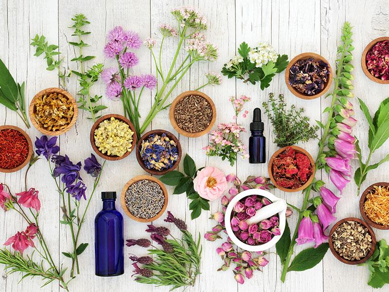 Aromatherapy Ingredients